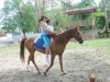 Hippotherapy in the treatment of disabled children