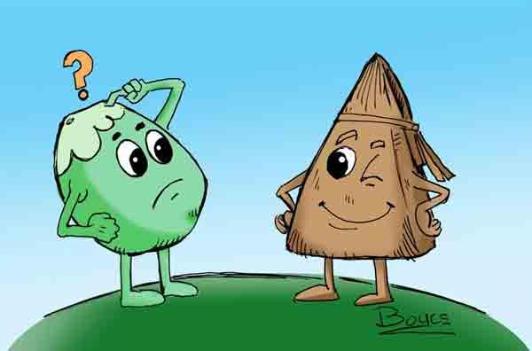 The cucurucho de coco (coconut cone)