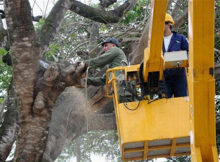 Meteoro 2016: Cuba Better Prepared to Cope with Disasters (Photo: Vicente Brito / Escambray)