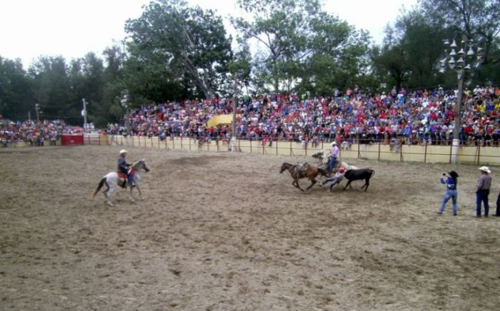 escambray today, rodeo competitions, cattle fair, delio luna echemendía fair center, skirmisher