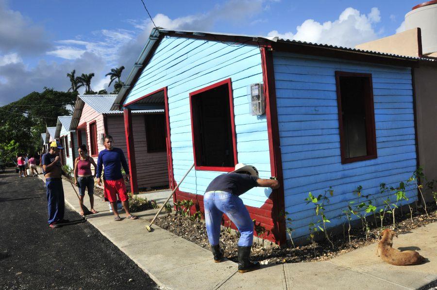 escambray today, hurricane irma, recovery after irma, seibabo, yaguajay, palm tree wood
