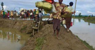 Refugees in Bangladesh