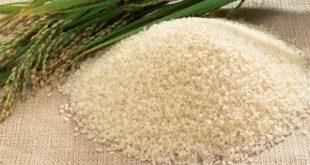rice from vietnam