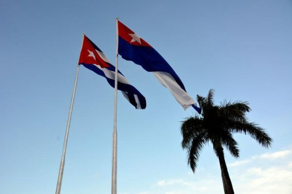 Cuban flags and palm trees
