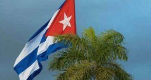 cuban flag and palm tree