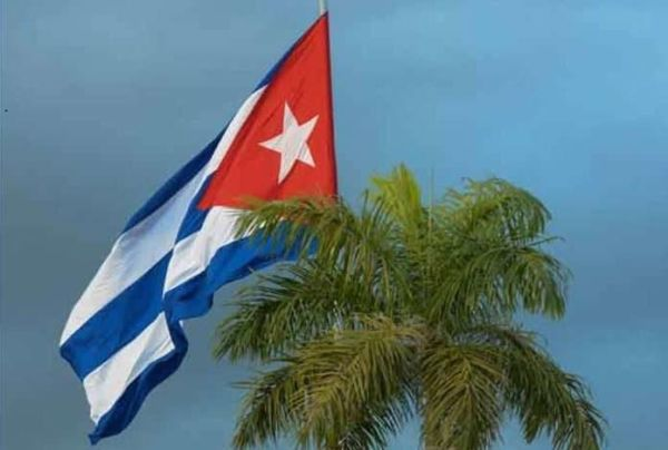 cuban flag and palm tree