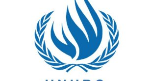 united nations human rights council logo