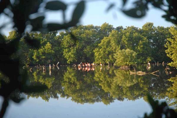 Caguanes National Park in Yaguajay, central Cuban province of Sancti Spiritus